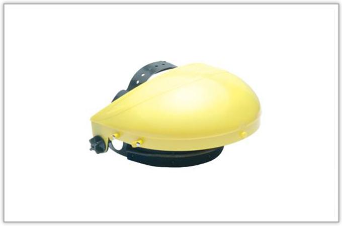 WB200标准单用型防护面罩
